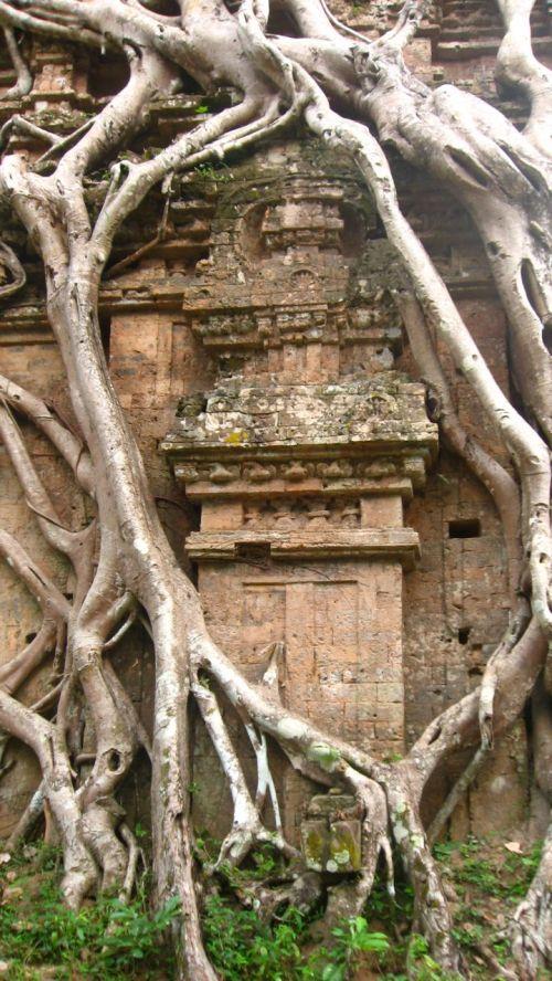 treecoveredtemple